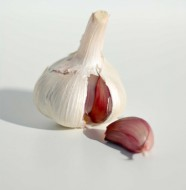 knoblauch